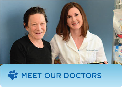 Meet Our Doctors